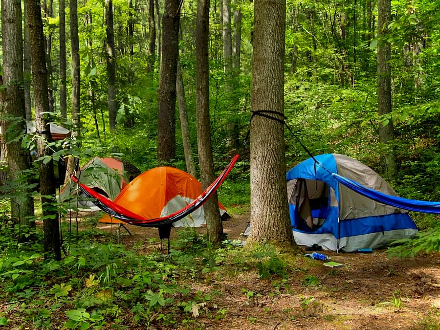 camping in the forest Campsites may be reserved in three of the state forest campgrounds starting in late may and ending september 30th any campsites not reserved are available on a first-come basis and requires immediate occupancy.